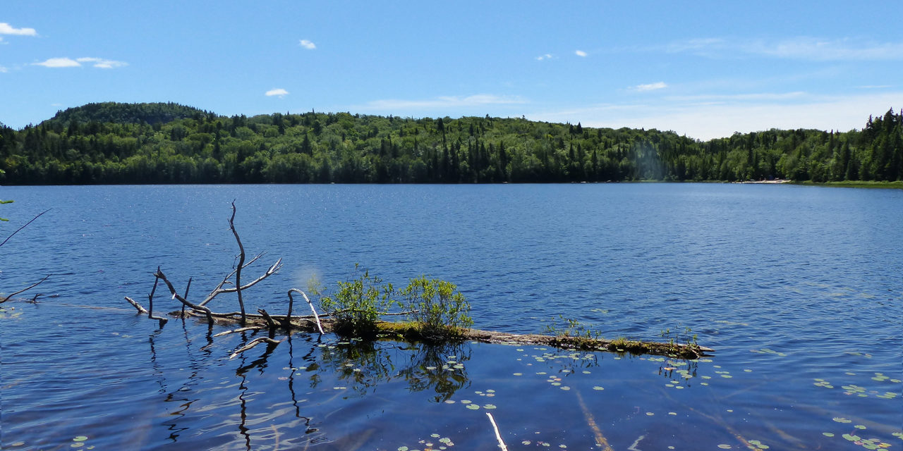 Spot 5 : Camping lac Cooping