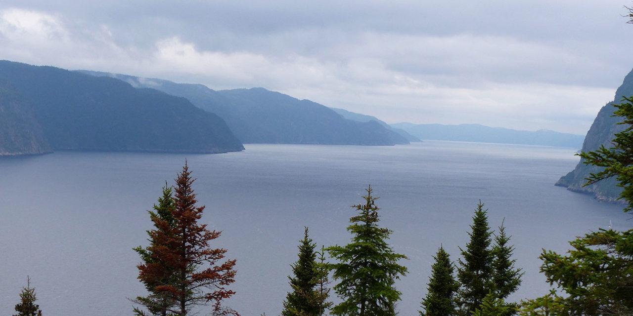 Spot 14 : Parc national du Fjord du Saguenay