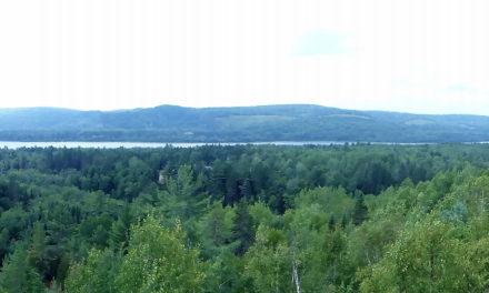Spot 10 : Parc des Chutes-de-la-Petite-Rivière-Bostonnais