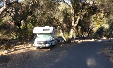 Spot 57 : Sequoia National Park
