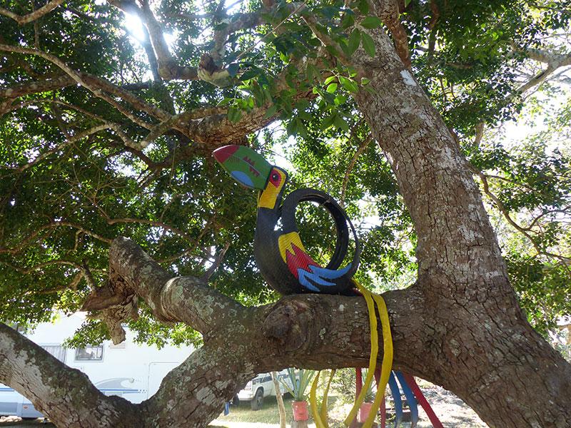 Spot 85 : Grutas de Candelario – Homún