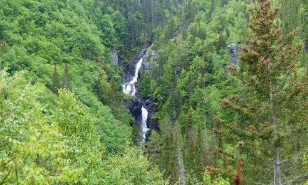 Spot 20 : Parc national de la Gaspésie