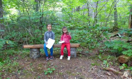 Spot 23 : Camping Chalets Restigouche