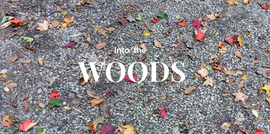 De bois en bois …