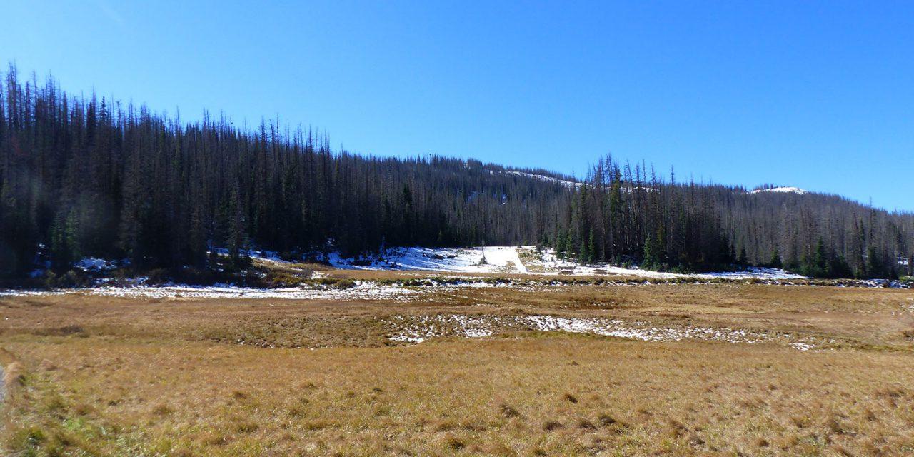 Spot 44 : South Fork
