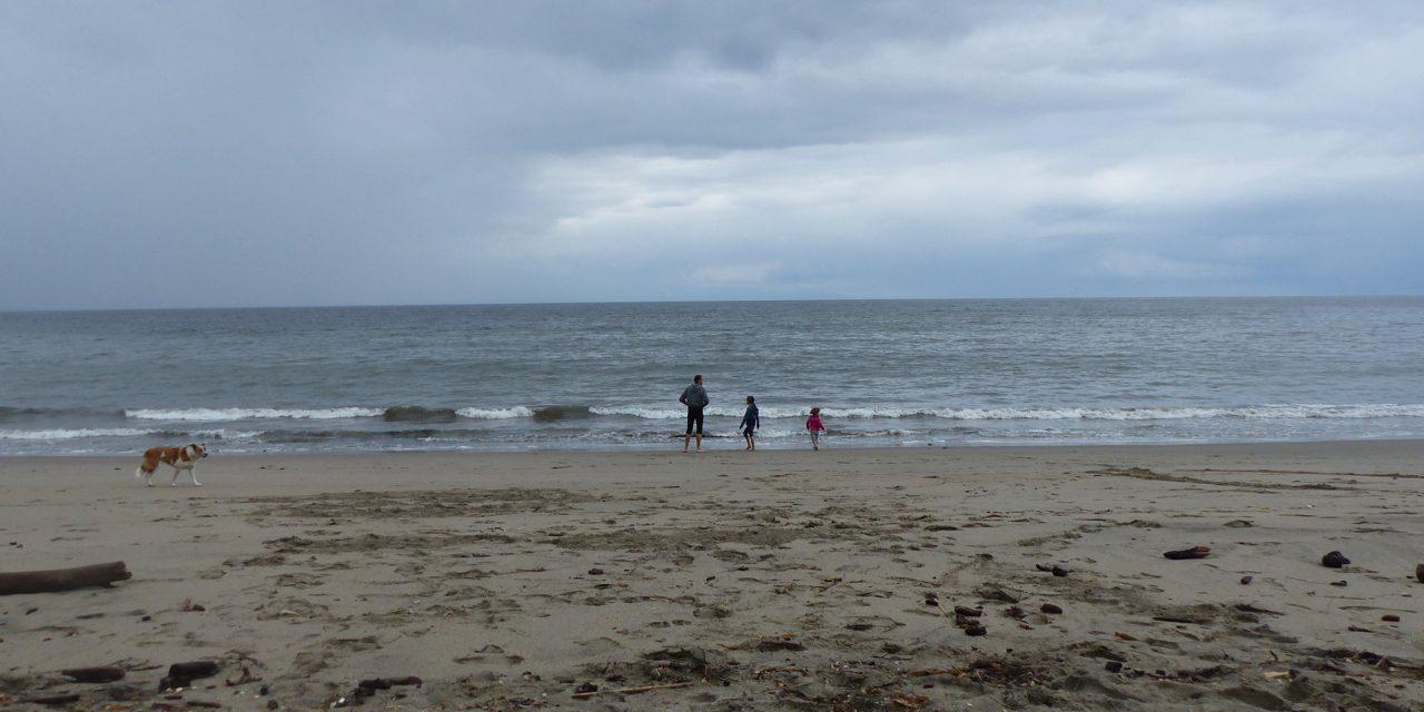 Spot 61 : New Brighton State Park – Santa Cruz