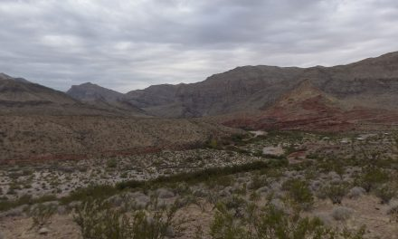 Spot 50 : Virgin river Canyon Campground